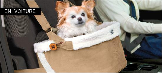 si ge auto canin pour voyager en voiture en toute s curit woof mag 39 le blog des chiens heureux. Black Bedroom Furniture Sets. Home Design Ideas