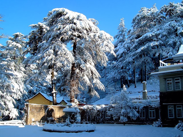 Shimla Honeymoon Destinations in India