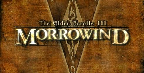 The Nocturnal Rambler: Morrowind Sucks, aka, Morrowind is