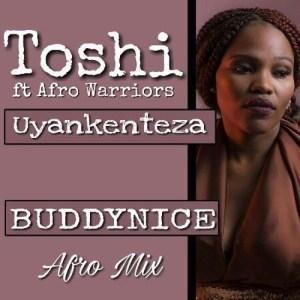 Afro Warriors Feat.Toshi - Uyankenteza