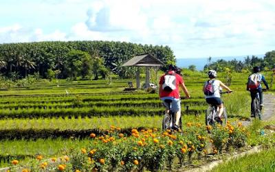 """""""Fasilitas Apa Saja yang Ditawarkan eBikes Bali"""""""