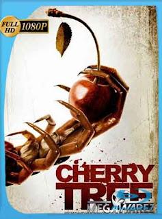 Cherry Tree 2015 HD [1080p] Latino [Mega]dizonHD