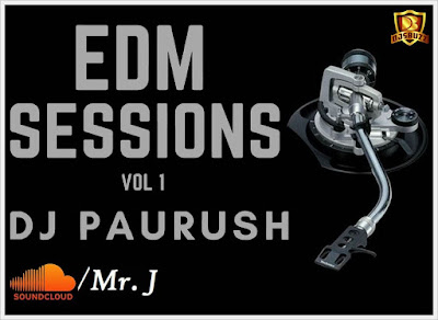 EDM SESSIONS VOL.1 – DJ PAURUSH