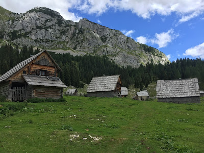 Day 4 - Planina Laz = cheese.