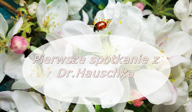 dr.hauschka.pl | Miętowy balsam do intensywnej pielęgnacji ust