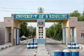 Cultural Sustainability Scholarship At University Of Maiduguri