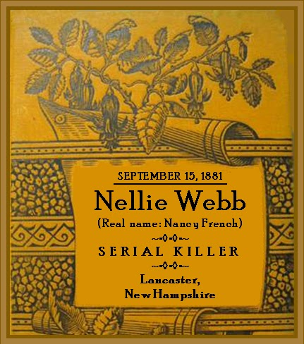 Unknown Gender History: Nellie Webb, Suspected New Hampshire