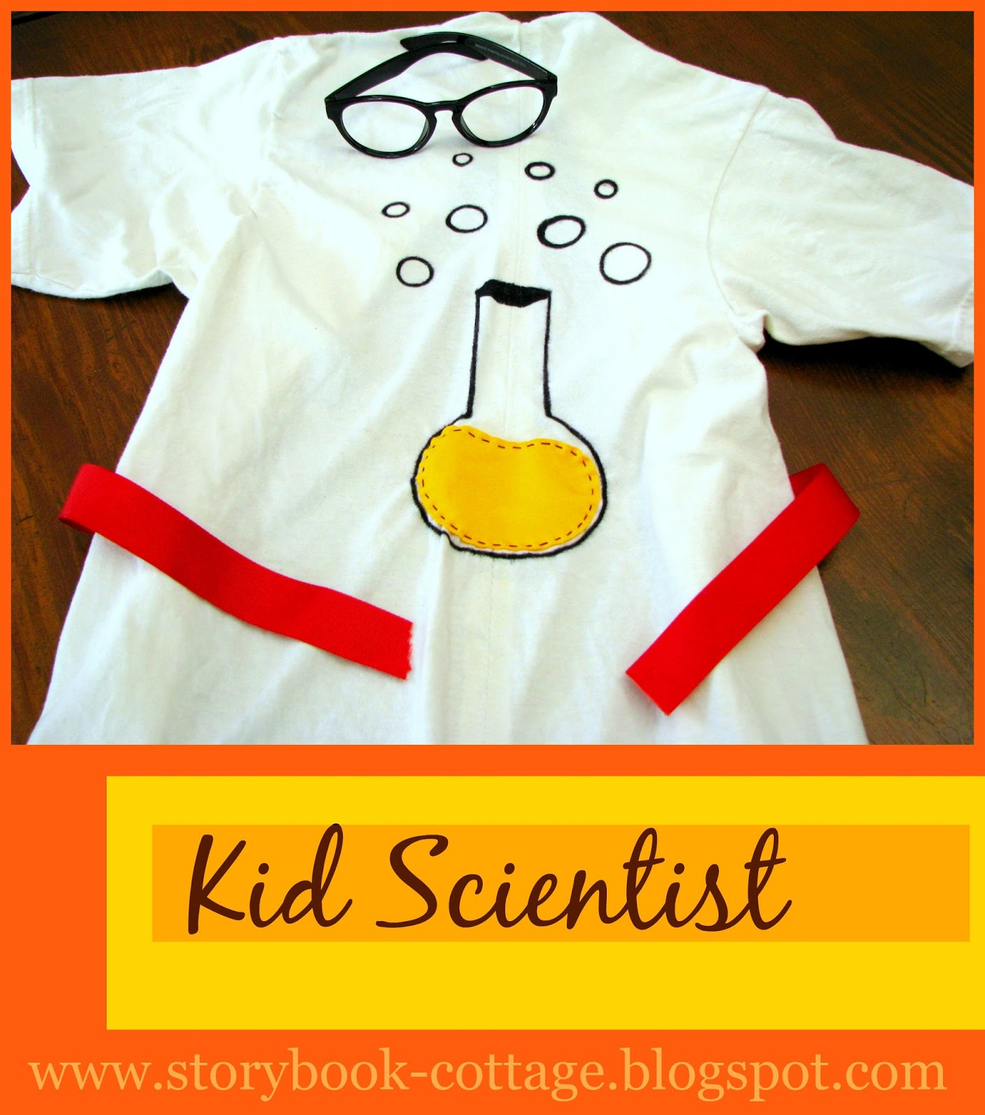 Let S Play Dress Up: Storybook-cottage: Let's Play Dress Up...Kid Scientist