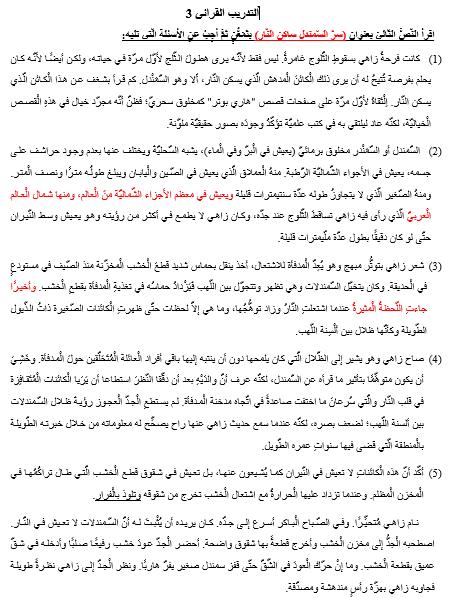 ورقة عمل التدريب القرائي في اللغة العربية للصف التاسع