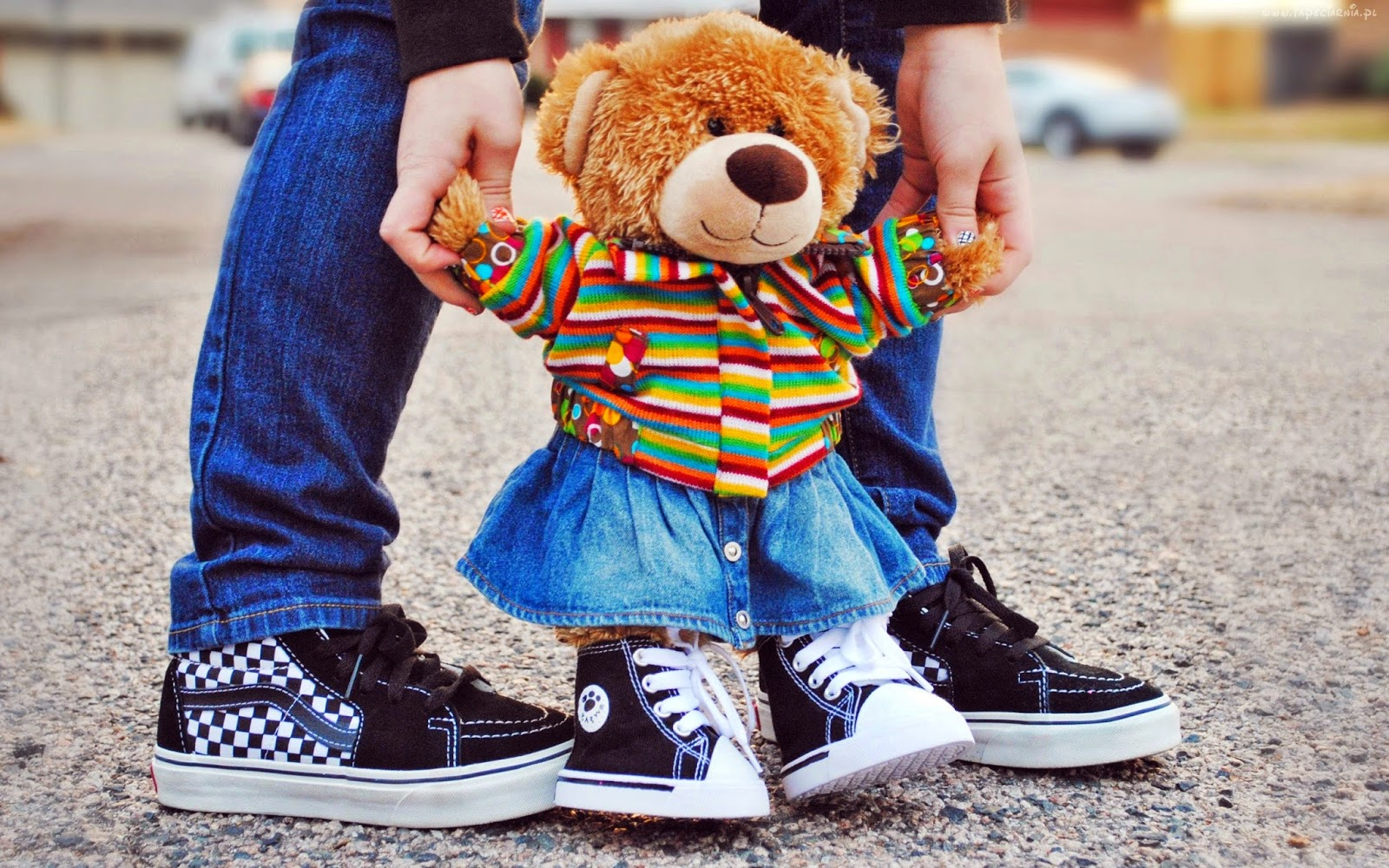 Teddy-learning-to-walk-cute-funny-picture-for-girls-sharing-2560x1600.jpg