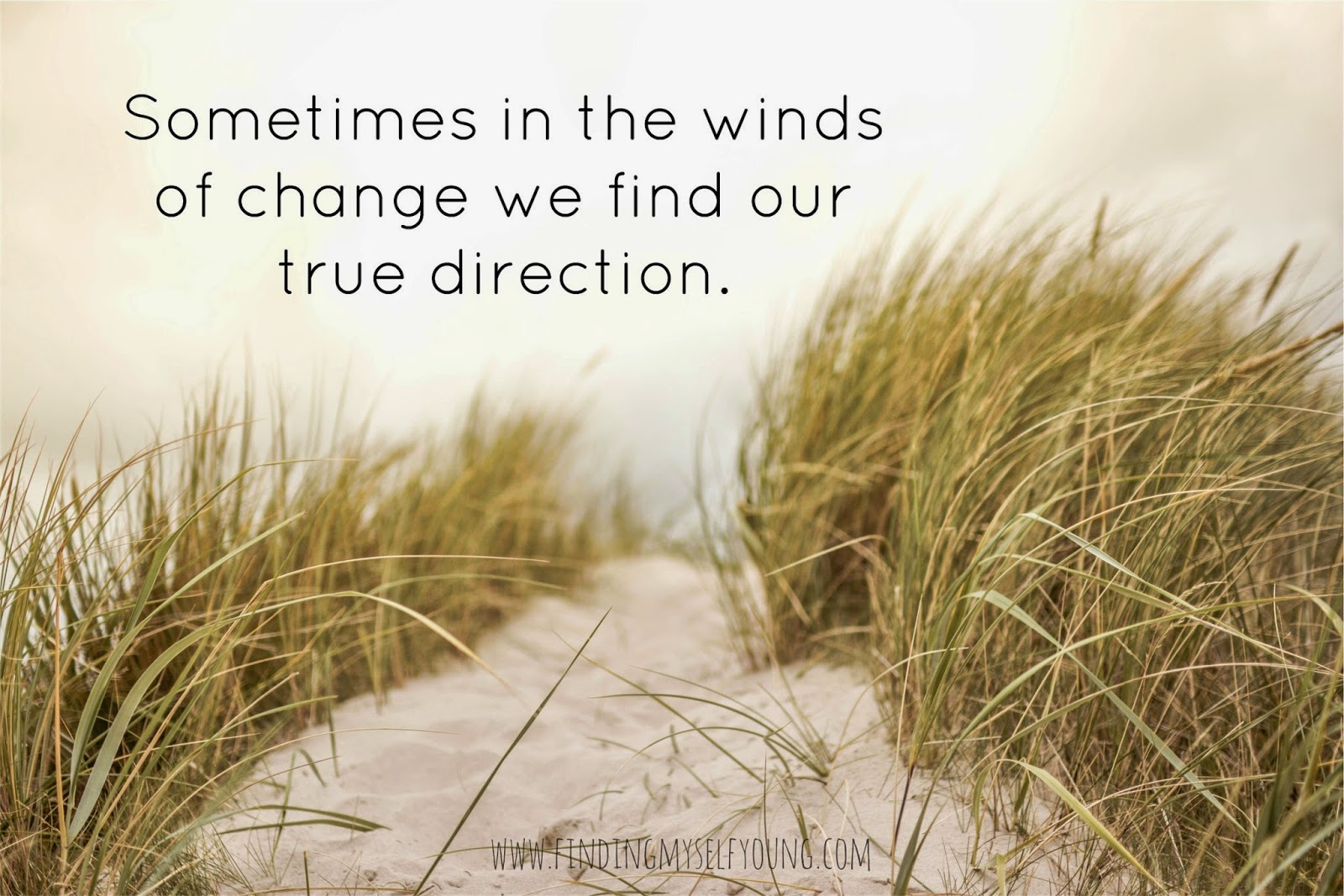 quote - sometimes in the winds of change we find our true direction.
