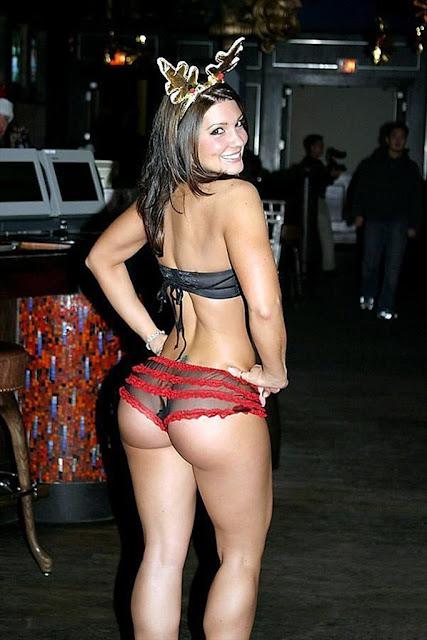 Gina Carano pics 2 Gata   Gina Carano lutadora de MMA