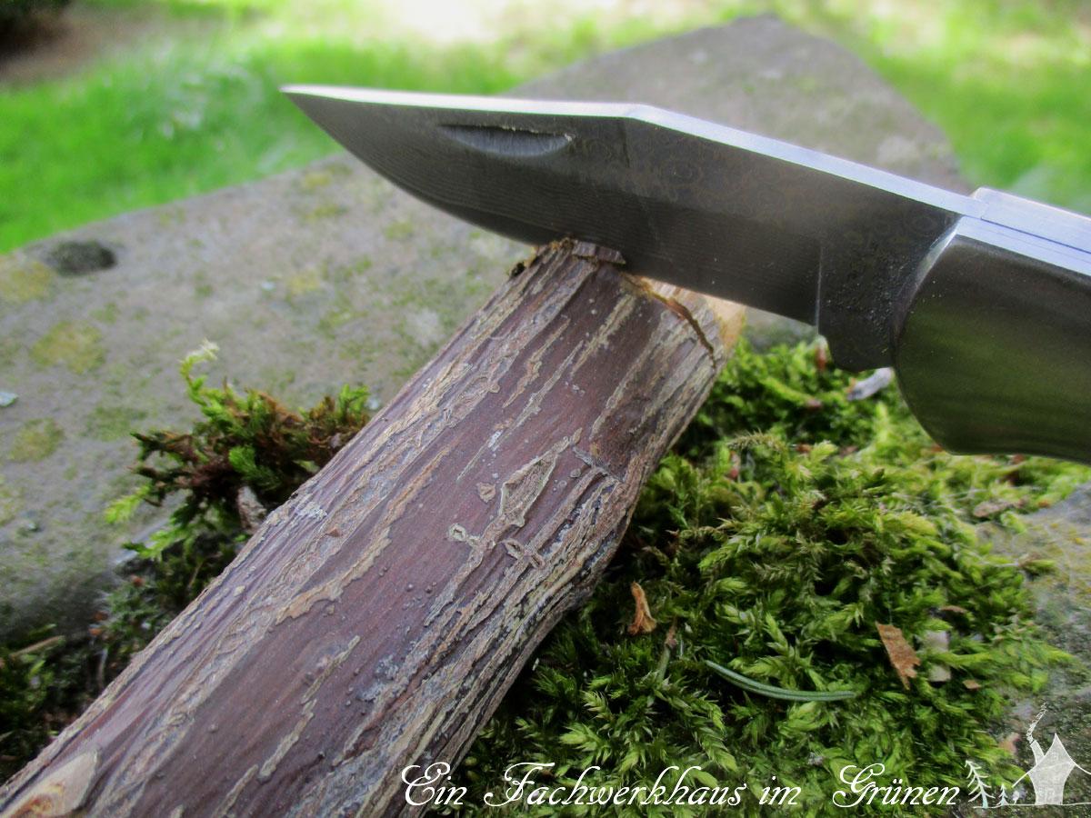Dekopilz, DIY, Gartenblog