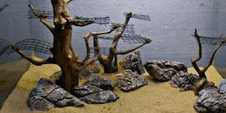 batu aquascape