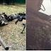 """LOOK: Military sniper kills the Maute sniper who killed his 'kumpare': """"Nakaisa na ako para sa iyo, pare"""""""
