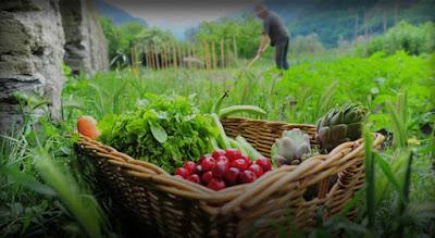 ΔΕΛΤΙΟ ΤΥΠΟΥ. ΥΠΑΑΤ: Κονδύλια 555 εκατ. ευρώ για την ενίσχυση βιολογικής γεωργίας και κτηνοτροφίας