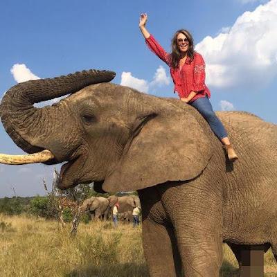 elizabeth-hurley-takes-elephant-ride