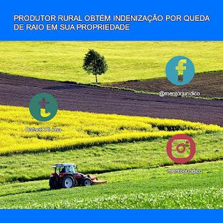 Indenização queda de raio propriedade rural