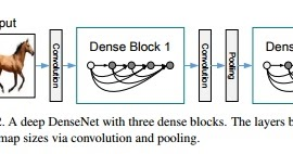 Nuit Blanche: Densely Connected Convolutional Networks