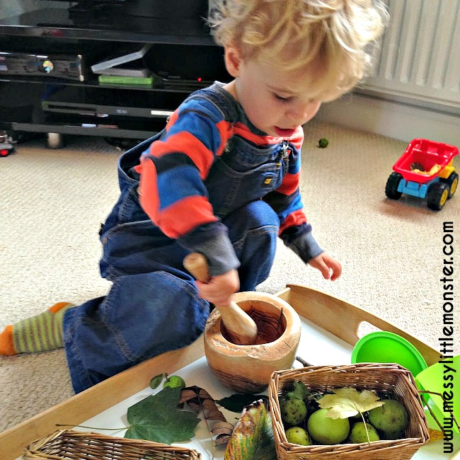 Autumn (Fall) nature tray for kids. A simple activity for toddlers and preschoolers.