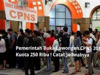 Pemerintah Buka Lowongan CPNS 2019, Jumlah Kuota 250 Ribu ! Catat Jadwalnya