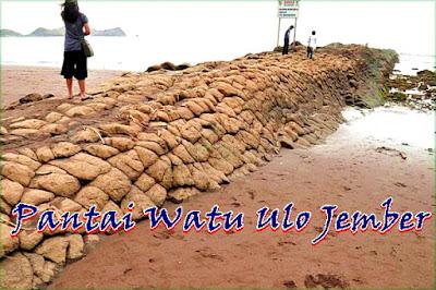 Wisata Pantai Watu Ulo Jember