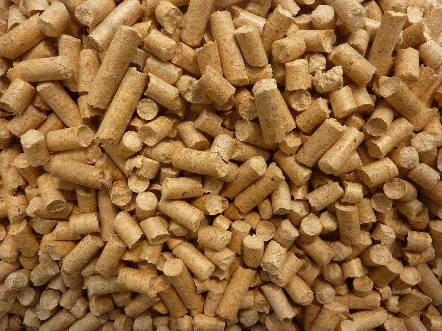 wheat based cat litter reviews