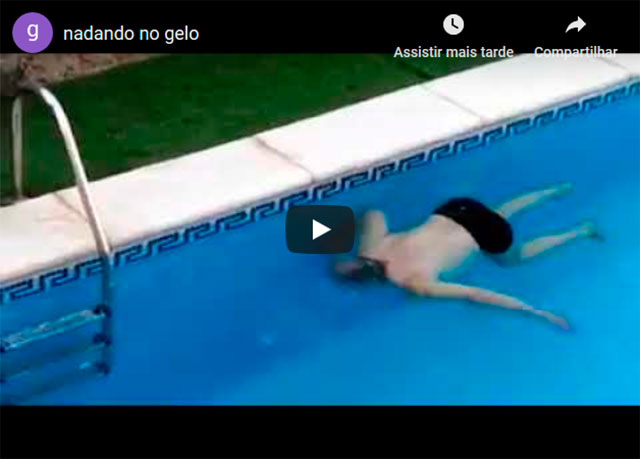 https://www.insoonia.com/pai-da-elsa-nadando-na-piscina-e-tudo-que-voce-precisa-ver-antes-de-dormir/