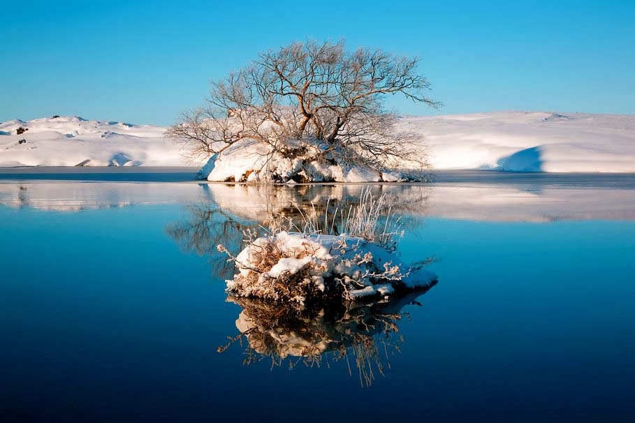 amazing-natural-winter-tree-sky-lake-water-reflection-picture