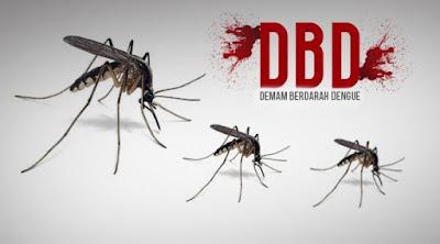 Penyakit demam berdarah