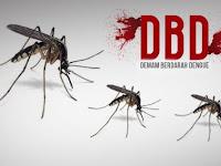 Penyebab Gejala dan Pencegahan Demam Berdarah