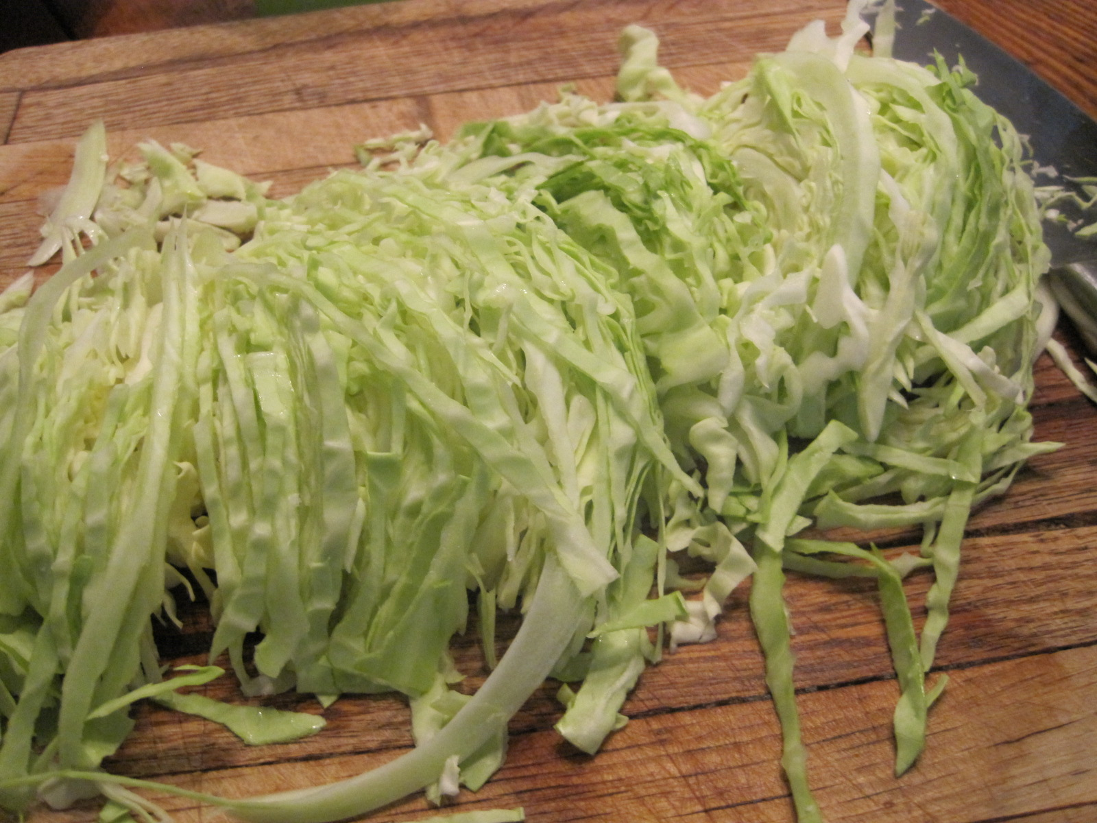 Cabbage Food Processor