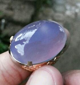 cara merawat batu lavender kontes