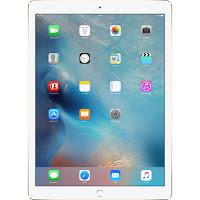 iPad Pro 32GB Oro Wi Fi