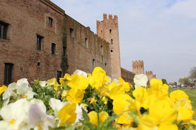 provincia di Padova, Montagnana