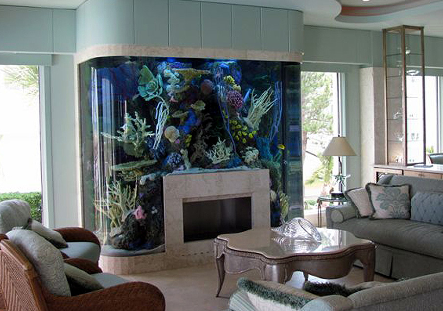 No Room For An Aquarium? Think Again. 20 Unusual Places In