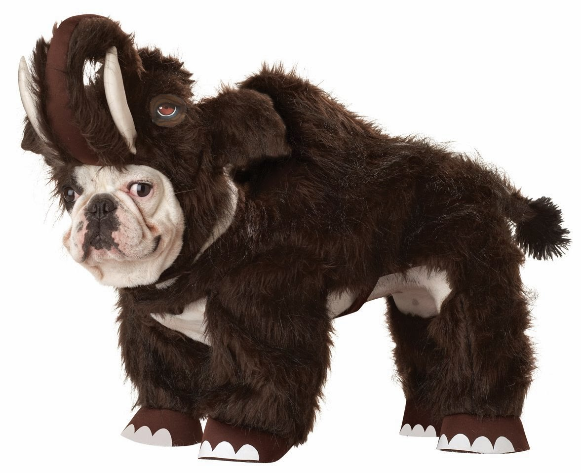 woolly mammoth dog costume in small and extra small