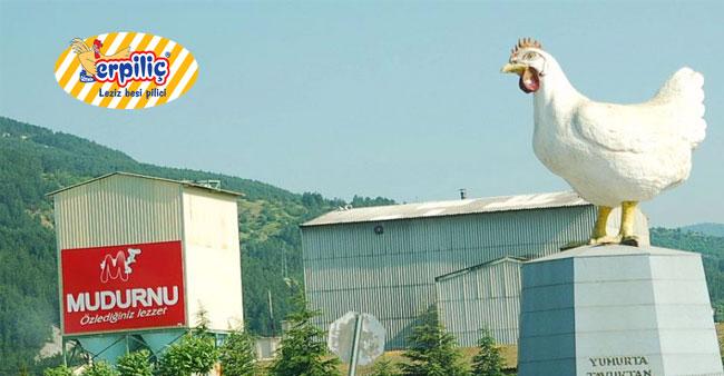 Mudurnu Tavukçuluk Yeniden Açılıyor