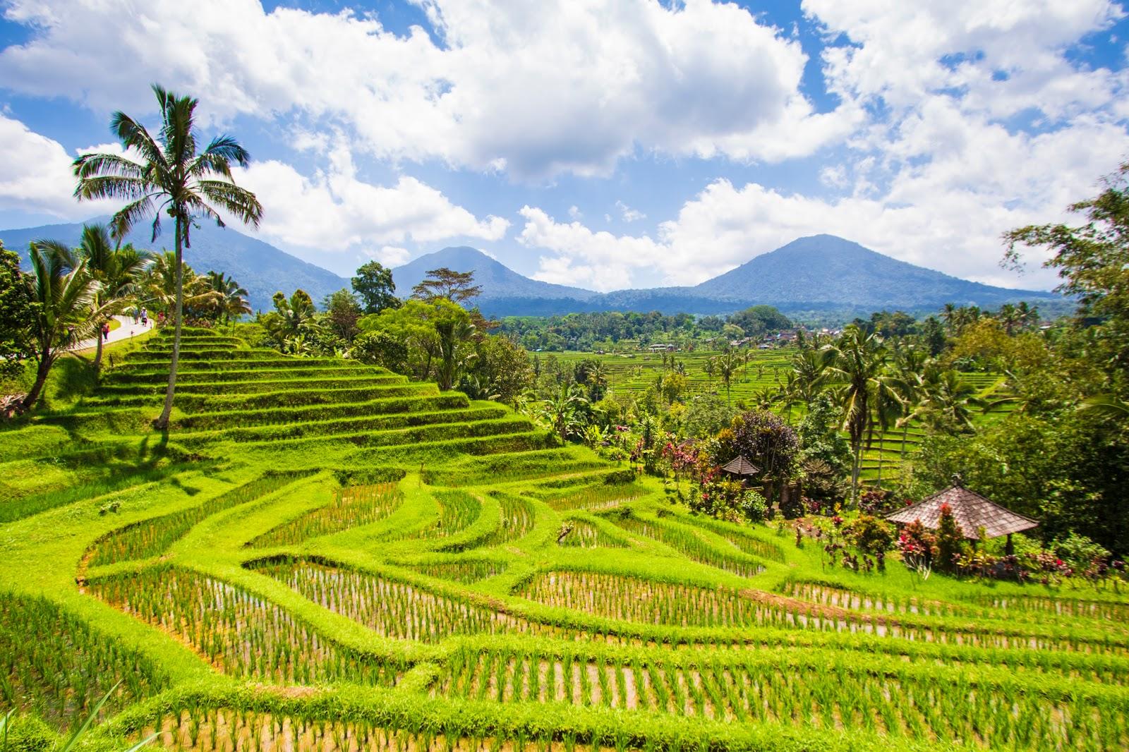 Bali, diario di viaggio: secondo giorno