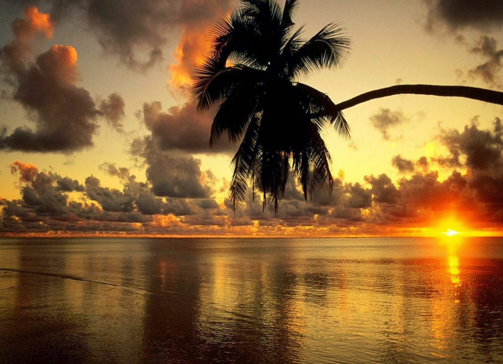 Beautiful Wallpapers: Amazing Sunset Fb Covers