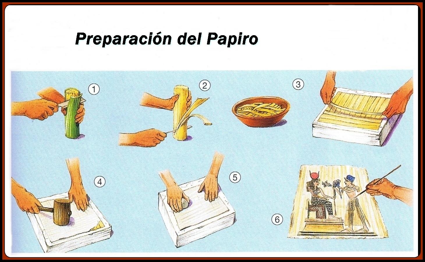 Pasos de preparación del papiro