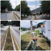 Avanza desmalezamiento de la avenida Universidad de Mérida