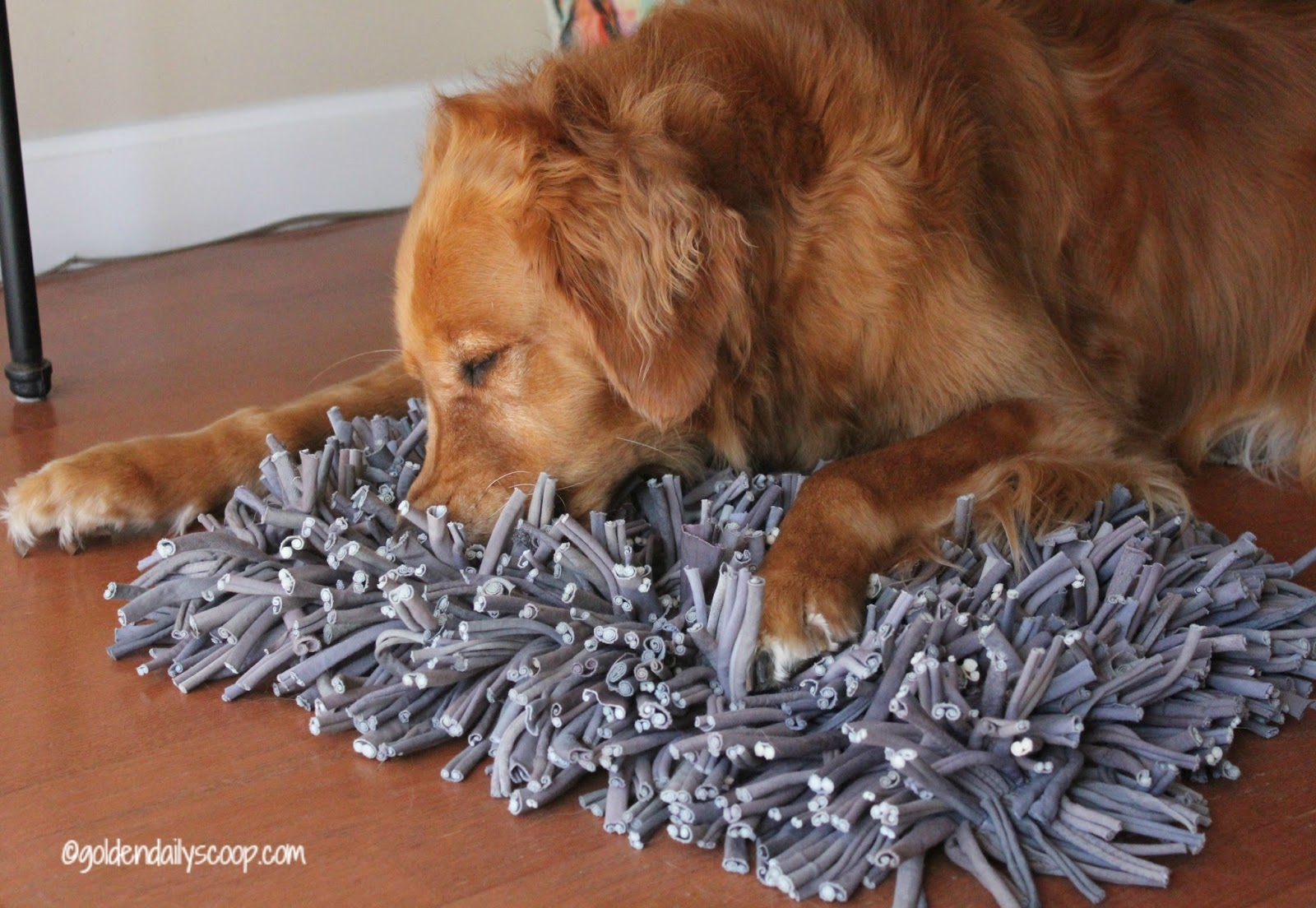 Sniffing Out The Wooly Snuffle Mat