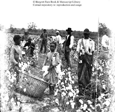 US Slave: Cotton Comes To The Mississippi Delta
