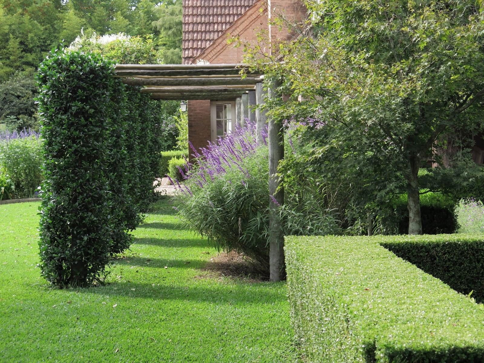 En el jardin lleg el oto o for Casa jardin 8 de octubre