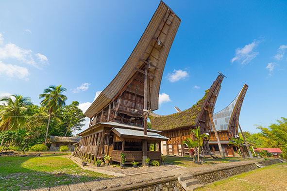 970 Koleksi Foto Gambar Rumah Adat Toraja HD