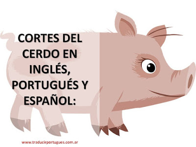 pig, porco, cerdo, translation, traducción, english, spanish, portuguese