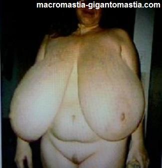 sexy macromastia