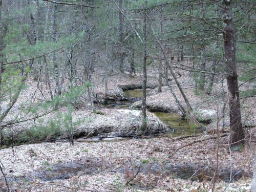 Jenks Creek