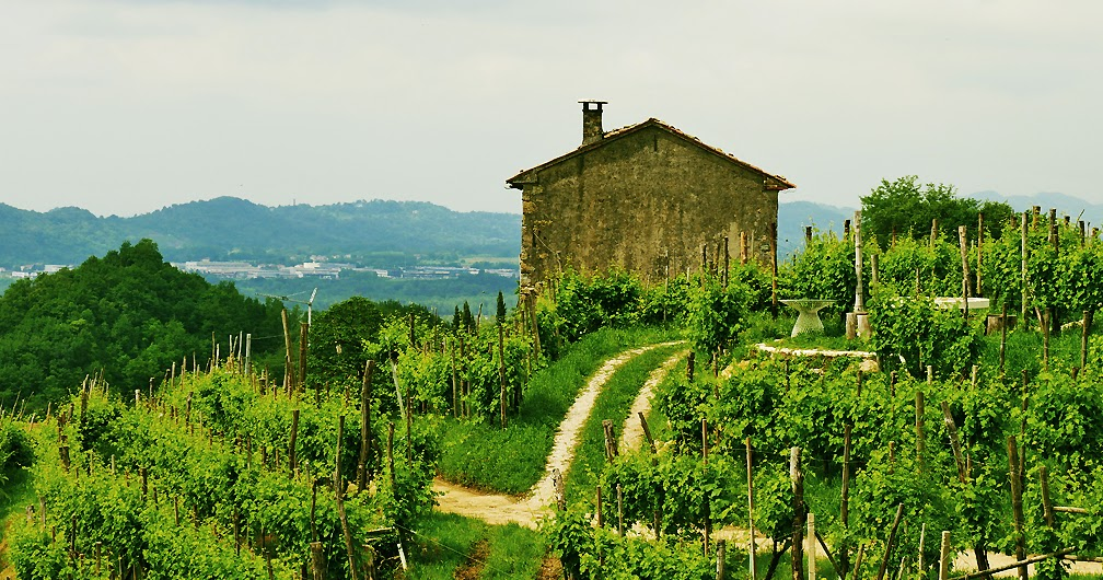 The Long Green Mile ? An Enduring Life in Italy